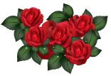 Transparent_Red_Roses_PNG_Clipart
